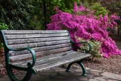 Πάγκος πάρκων σε έναν κήπο Στοκ φωτογραφία με δικαίωμα ελεύθερης χρήσης