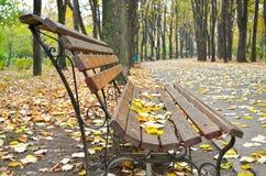 Πάγκος πάρκων το φθινόπωρο στοκ φωτογραφία