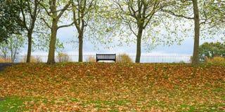 Πάγκος πάρκων Στοκ Εικόνες