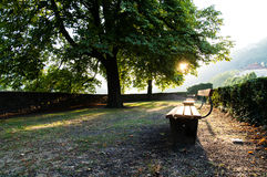 Πάγκος πάρκων Στοκ Εικόνα