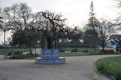 Πάγκος πάρκων - Santarém - Πορτογαλία στοκ φωτογραφία με δικαίωμα ελεύθερης χρήσης