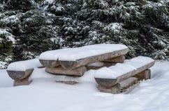 πάγκος που καλύπτεται χιονίζοντας χειμώνας χιονιού σκηνής πάρκων Στοκ Εικόνα