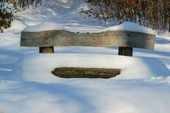 πάγκος που καλύπτεται χιονίζοντας χειμώνας χιονιού σκηνής πάρκων Στοκ Εικόνες