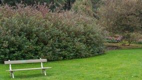Πάγκος σε ένα πάρκο Στοκ Εικόνες