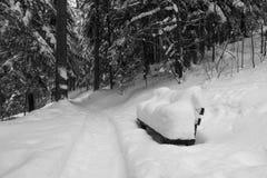 Πάγκος στα ξύλα Στοκ Φωτογραφίες