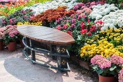 Πάγκος στον κήπο στοκ εικόνες με δικαίωμα ελεύθερης χρήσης