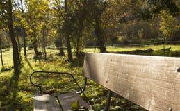 Πάγκος στο δημόσιο πάρκο Στοκ Φωτογραφίες