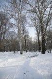 Πάγκος στο πάρκο με το χιόνι Στοκ Εικόνες