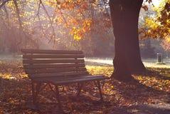 Πάγκος στο πάρκο Στοκ Φωτογραφίες