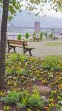 Πάγκος στο πάρκο Στοκ εικόνες με δικαίωμα ελεύθερης χρήσης