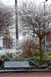 Πάγκος στο χειμερινό πάρκο Στοκ Εικόνες