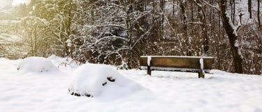 Πάγκος στο Winter Park Στοκ Φωτογραφία