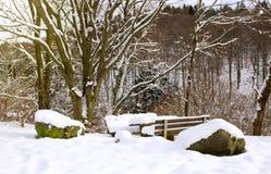 Πάγκος στο Winter Park Στοκ Εικόνες