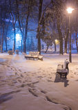 Πάγκος τοπίων χειμερινής νύχτας κάτω από τα δέντρα και λάμποντας μειωμένα snowflakes φωτεινών σηματοδοτών Στοκ φωτογραφία με δικαίωμα ελεύθερης χρήσης