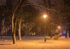 Πάγκος τοπίων χειμερινής νύχτας κάτω από τα δέντρα και λάμποντας μειωμένα snowflakes φωτεινών σηματοδοτών Στοκ εικόνες με δικαίωμα ελεύθερης χρήσης