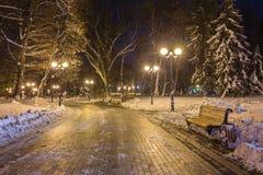 Πάγκος τοπίων χειμερινής νύχτας κάτω από τα δέντρα και λάμποντας μειωμένα snowflakes φωτεινών σηματοδοτών Στοκ Φωτογραφία