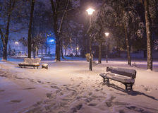 Πάγκος τοπίων χειμερινής νύχτας κάτω από τα δέντρα και λάμποντας μειωμένα snowflakes φωτεινών σηματοδοτών Στοκ εικόνα με δικαίωμα ελεύθερης χρήσης