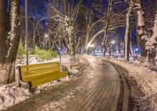 Πάγκος τοπίων χειμερινής νύχτας κάτω από τα δέντρα και τη λάμποντας οδό lig Στοκ Εικόνα