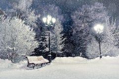 Πάγκος τοπίων χειμερινής νύχτας που καλύπτεται με το χιόνι μεταξύ των παγωμένων χειμερινών δέντρων και των φω'των Στοκ εικόνα με δικαίωμα ελεύθερης χρήσης