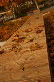 Πάγκος το φθινόπωρο στοκ φωτογραφία με δικαίωμα ελεύθερης χρήσης