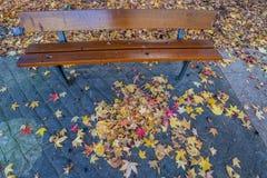 Πάγκος το φθινόπωρο - Vigo Στοκ Εικόνες