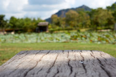 Πάγκος τσιμέντου στο ξύλο όπως την επιφάνεια με το υπόβαθρο κήπων θαμπάδων Στοκ φωτογραφίες με δικαίωμα ελεύθερης χρήσης