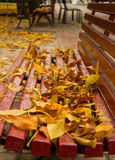 Πάγκος φθινοπώρου στο πάρκο στοκ εικόνες με δικαίωμα ελεύθερης χρήσης