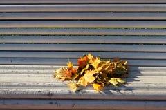 πάγκος φθινοπώρου Στοκ εικόνες με δικαίωμα ελεύθερης χρήσης