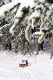 πάγκος 3 κανένας χειμώνας Στοκ Φωτογραφία