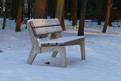 Πάγκος Winter Park Στοκ φωτογραφίες με δικαίωμα ελεύθερης χρήσης