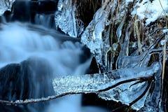 Πάγος λαρβικός Στοκ Φωτογραφίες