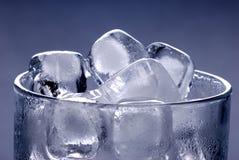 πάγος γυαλιού κύβων στοκ εικόνα