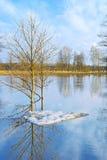 πάγος επιπλέοντος πάγου τελευταίος Στοκ Εικόνες