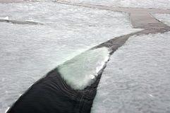 Πάγος θαλασσινού νερού Στοκ Φωτογραφίες
