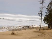 Πάγος-καλυμμένη λίμνη Baikal Άνοιξη Στοκ Εικόνα