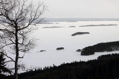 Lakeview Στοκ φωτογραφίες με δικαίωμα ελεύθερης χρήσης