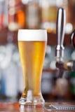 Πάγος - κρύα μπύρα Στοκ εικόνες με δικαίωμα ελεύθερης χρήσης
