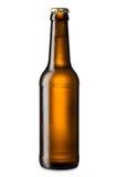 Πάγος - κρύο μπουκάλι μπύρας Στοκ Εικόνες