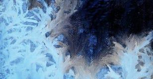 πάγος λουλουδιών Στοκ Φωτογραφίες