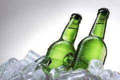 πάγος μπουκαλιών μπύρας Στοκ Φωτογραφία