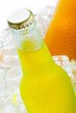 πάγος μπουκαλιών υγρός Στοκ Εικόνες