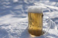 πάγος μπύρας Στοκ φωτογραφίες με δικαίωμα ελεύθερης χρήσης