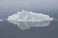 πάγος που αντανακλάται Στοκ Εικόνες