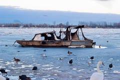 πάγος πυρκαγιάς Στοκ εικόνες με δικαίωμα ελεύθερης χρήσης