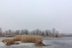 Πάγος στη λίμνη κρύος χειμώνας πορτοκάλι χλόης Στοκ εικόνες με δικαίωμα ελεύθερης χρήσης