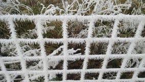 Πάγος στο φράκτη Στοκ φωτογραφία με δικαίωμα ελεύθερης χρήσης