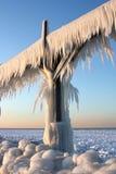 πάγος τ στοκ φωτογραφίες με δικαίωμα ελεύθερης χρήσης
