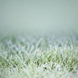 πάγος χλόης στοκ εικόνες