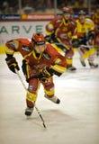 πάγος χόκεϋ Στοκ Φωτογραφίες
