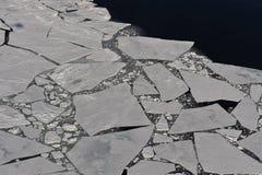 πάγος Στοκ Φωτογραφία